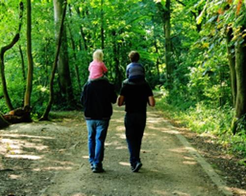 Same-Sex Couples Case Study
